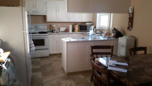 2-3 bedroom house for rent in lower college heights