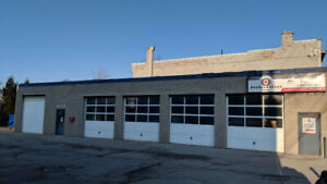 Hamilton Tire/Auto Shop & Website (PRICED TO SELL!!)