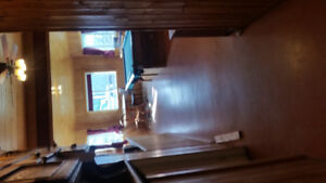 1 bdrm apt for rent on Hobby ranch 30 min west edm.