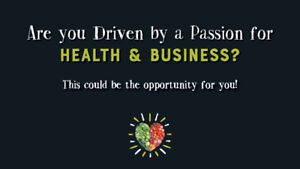 Business opportunity with a track record of success