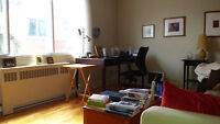 Very spacious and beautiful 3 1/2 Cote Des Neiges HEC