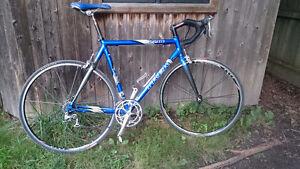 Trek 2200 road bike.
