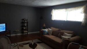 Spacious 2 Bedroom Apartment Lower Level Home UTILITIES INCLUDED
