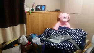 Furnished room for rent from end of December, close to UWO. London Ontario image 5