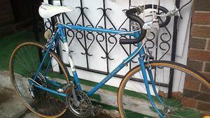 3 bikes , ROAD bike and VINTAGE bikes.