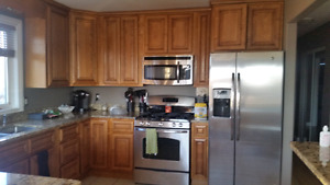 Solid Wood Cabinets with Custom Granite Countertops