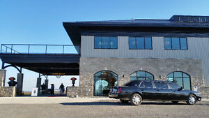 DLUX Limo Service - call for all your Limo Needs 905-962-3589