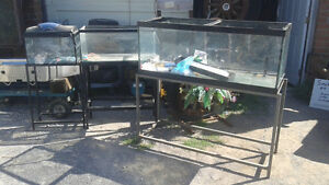 aquariums with stands 10g/30g