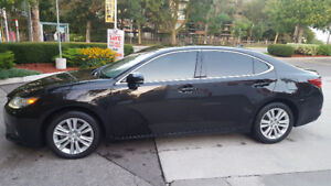 2013 Lexus Other Sedan