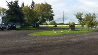 Drive Way, Parking Pads and More for Blackfalds and Area