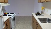 Great Location! Bright, Big&Clean 2BR on Eastside! Pet-Friendly!
