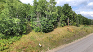 BEAUTIFUL LOT WITH DRILLED WELL ONSITE! Peterborough Peterborough Area image 4