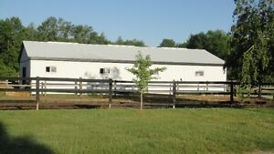 10 STALL HORSE BARN AND PASTURES FOR RENT