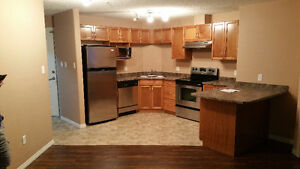 Clareview Drive Station Condo for Rent