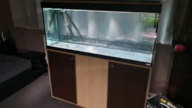 Fluval 4 foot tank & stand