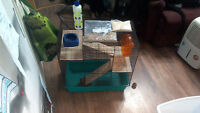 Rat/Hamster cage and more