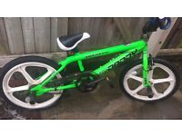 Rooster Skyway Big Daddy Freestyle BMX