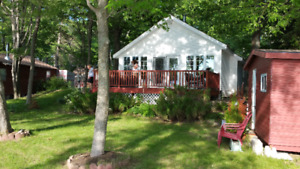 Honey Harbour Cottage and Bunkie for rent.