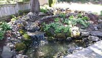 New Pond Install & Pond Re-Builds / FaceLift