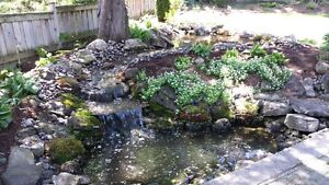 New Pond Install & Pond Re-Builds / FaceLift London Ontario image 1