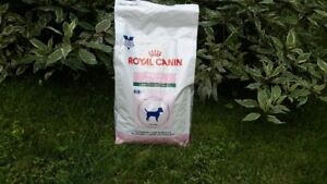 Nourriture Royal Canin dentaire
