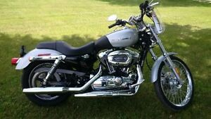 Harley Davidson 1200 Custom - REDUCED!!    $5000.00 certified