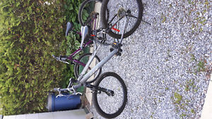 Awesome  condition  Bikes