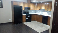 New 2 Bedrooms Legal Basement Timberlea - Available Immediately