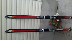 Pair of skis. Want gone asap