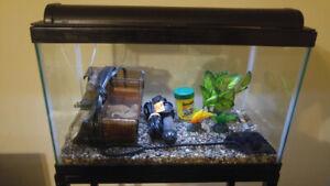 5gal aquarium fish tank fully equipped
