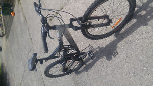 Mountain bike, excellent condition