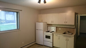 1 Bedroom Suite Available! McKernan Area, Near LRT and UofA!