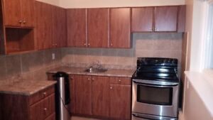 3 BEDROOM APARTMENT NEAR ARGYLE MALL $997