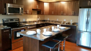 Newly rennovated condo for rent.  Fully furnished!