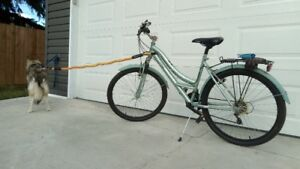 "Bikejoring Lady's 27"" Heavy Duty Bicycle"