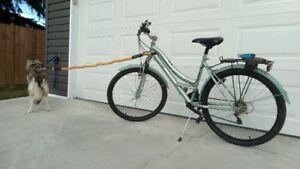 """Bikejoring Ladie's 27"""" Heavy Duty Bicycle"""