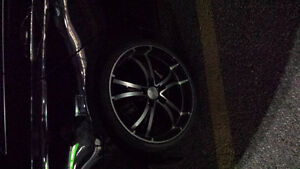 Summer Rims and tires