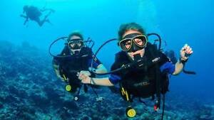 Free Scuba Diving for Carl? and his brother Greenwich Lane Cove Area Preview