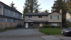 Well Maintained Spacious House for Rent in the Newton Area !
