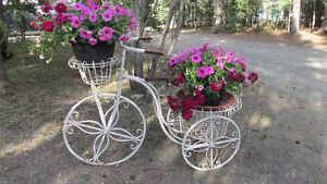 Ornamental tricycle with 2 flower planters