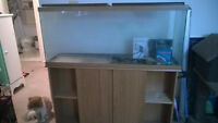 55 gallon fish tank + stand, heater, filter, and extra fi