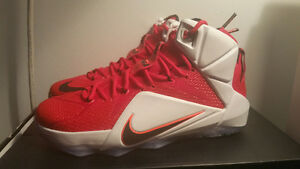 "Nike Lebron 12 ""Heart of the Lion"" Size 8.5 (Jordan, Adidas)"