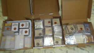Lot of 200 Canadian Coins Collection. All Certified Coins