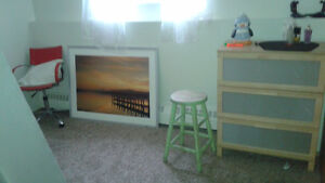 Shared apt room for rent