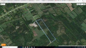 49 acres on Fitchett road, near Napanee. Build your dream home!
