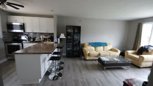 6 Bedroom Student Rental Fully Renovated with 3 Bathrooms London Ontario image 1