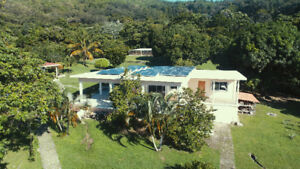 ISLAND PROPERTY : FOR RENT OR SALE 'BAY ISLANDS ' GUANAJA