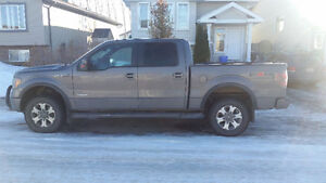 2011 Ford Pickup Truck