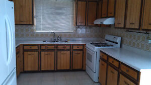 4 Bedroom house for rent in Malton  / Mississauga