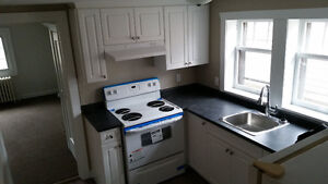 Bright, newly renovated 2 bedroom with large deck in old south